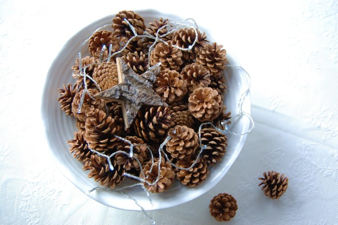 pinecones-christmas14