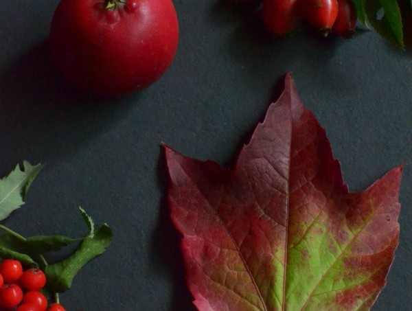 autumn-red-nature-table-decorators-notebook-blog1