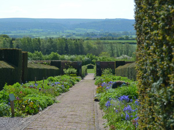 Walled gardens in Spring at The Ethicurean - Decorator's Notebook blog