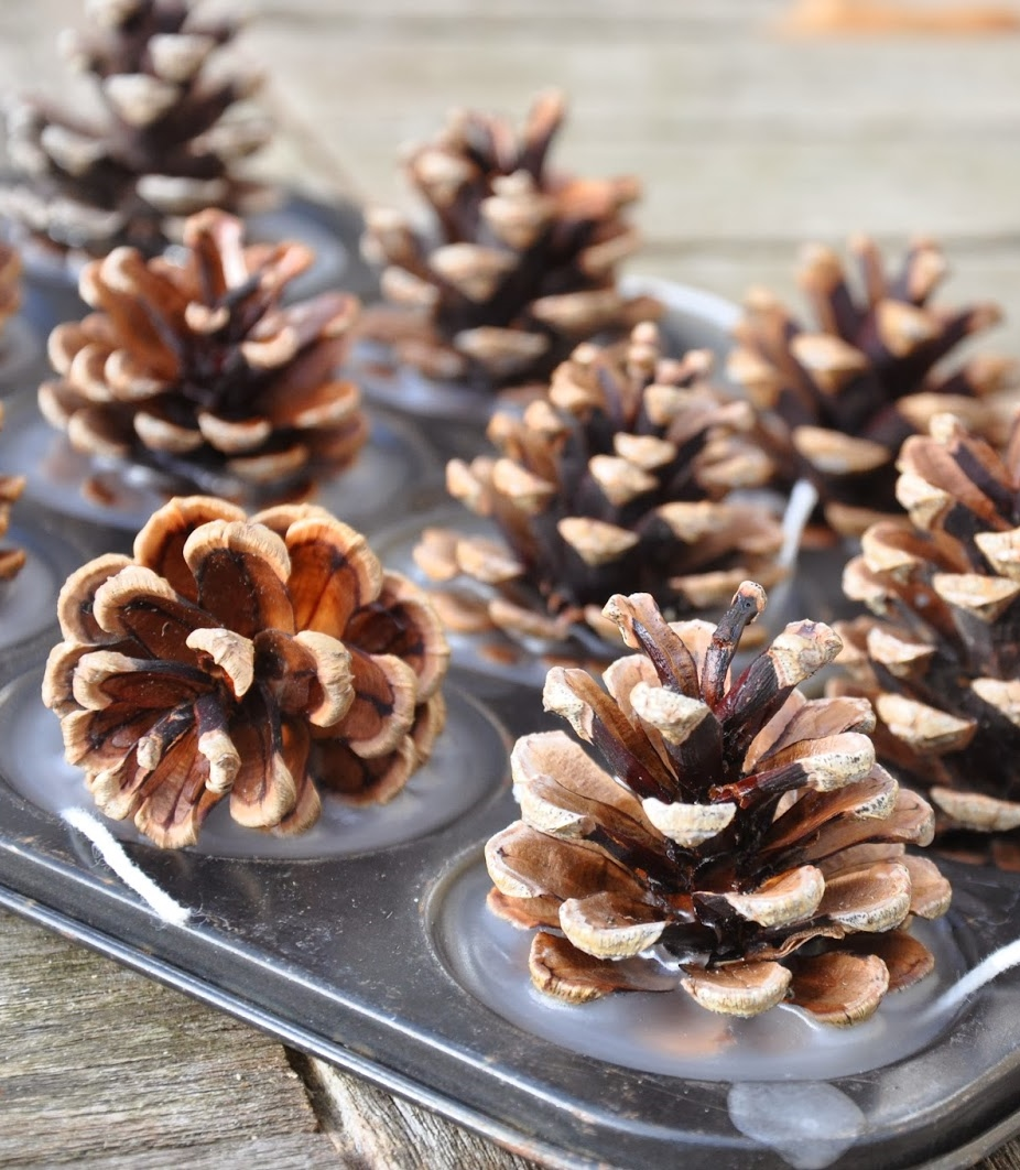 Winter Spiced Pinecone Firelighters