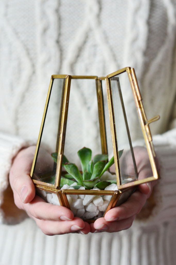 Terrarium DIY Decorator's Notebook