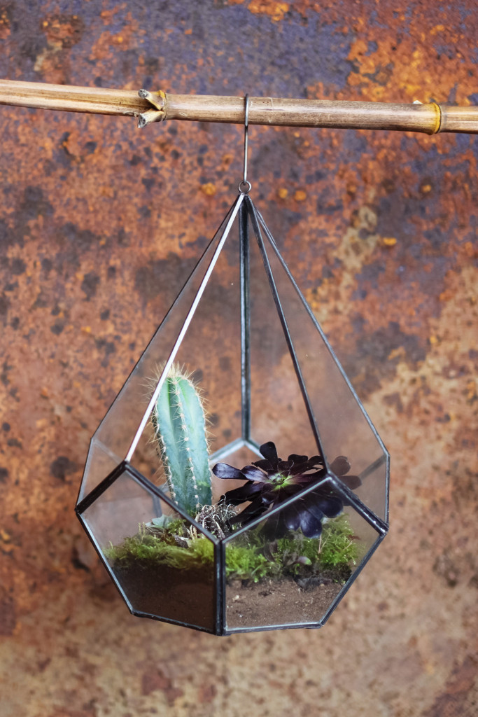 hanging terrarium Decorator's Notebook Shop